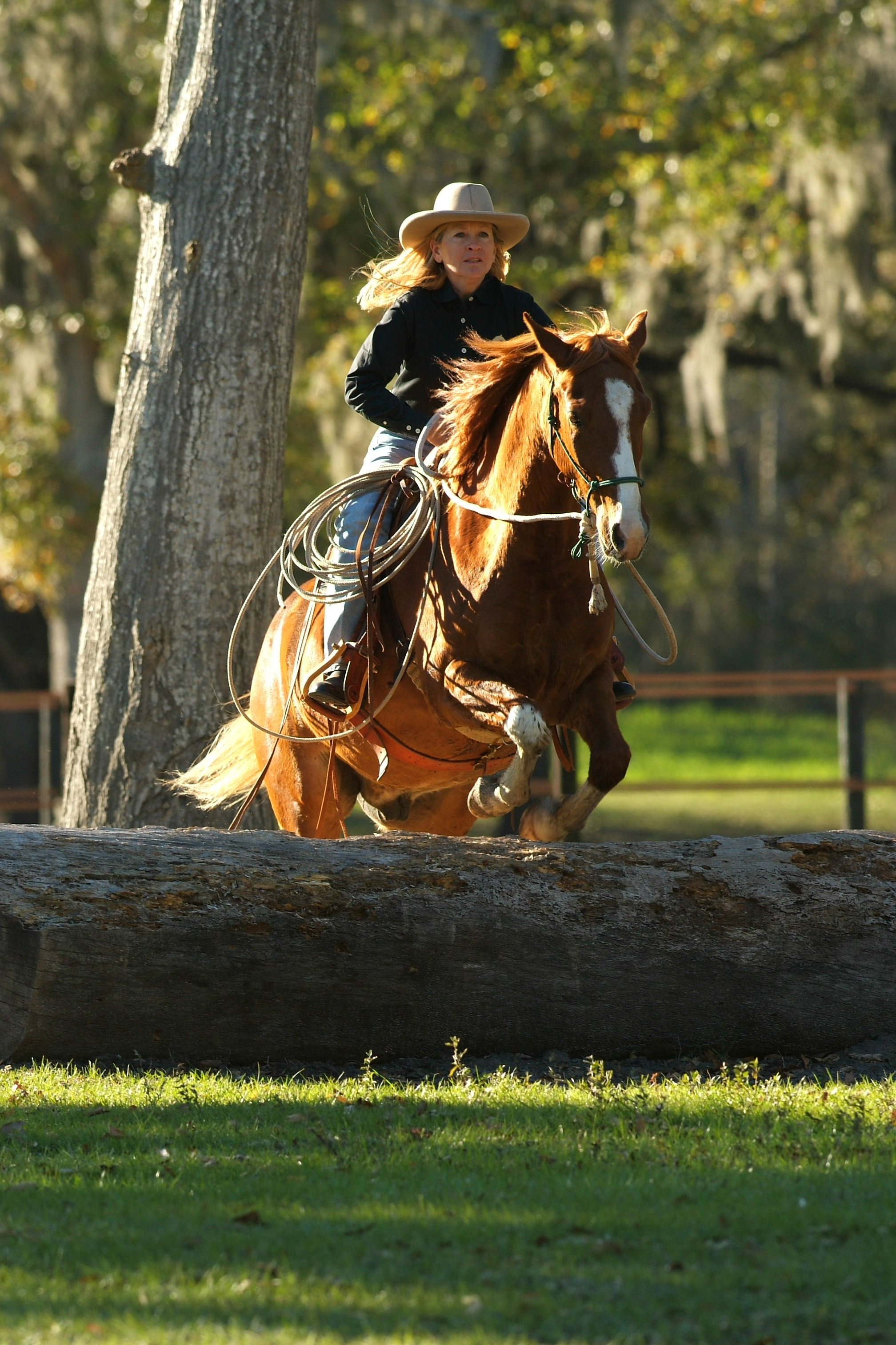 Christi Rains & her NSH Rusty at the Florida ISC - www.christirains.com