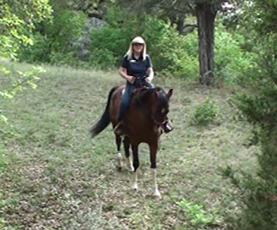 Trail Safety Tips for riding your horse down hill and leading down a narrow trail - www.christirains.com